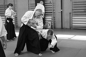 <strong>2017/07/01</strong><p>Letnia Szkoła Aikido 2017</p>